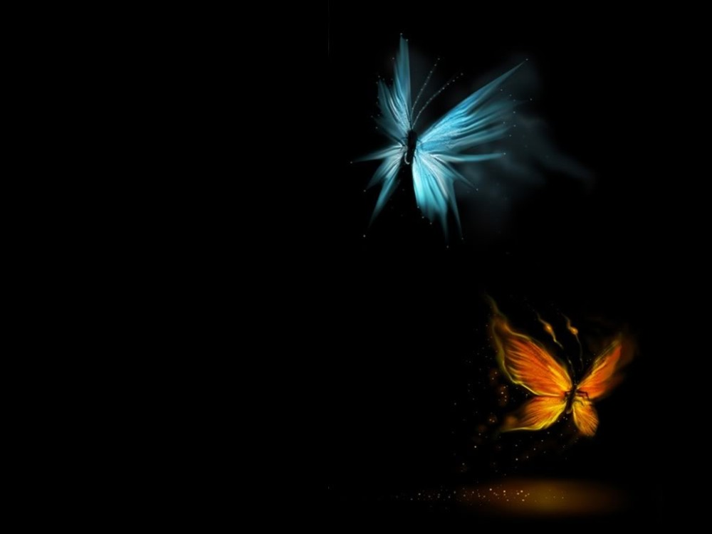 Butterfly Fire and Ice by Nessie Ralph