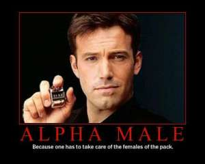 alpha_male