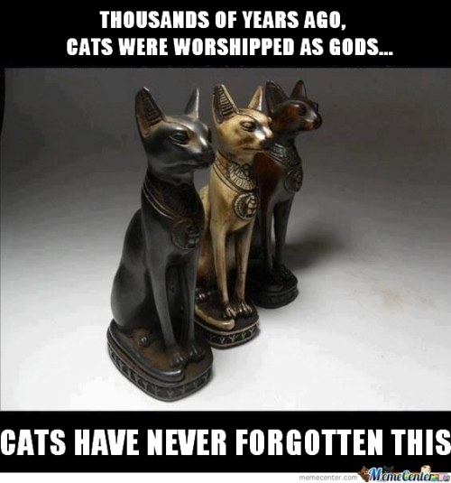catgods