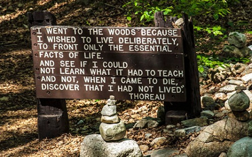 Thoreau-quote-sign.jpg