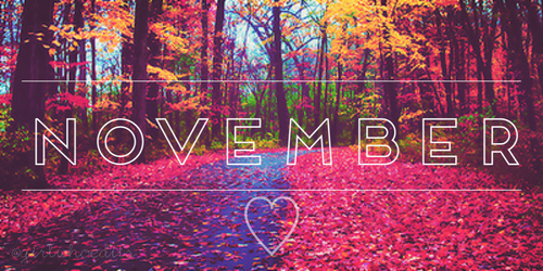 November 2015 Recap | Just Add Tea