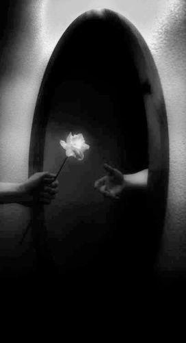 flowersmirror.jpg