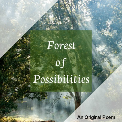 forestpossibilities