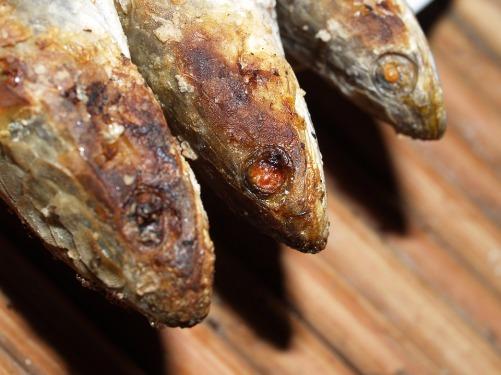 cookedfish