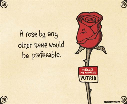rose-by-any-other-name